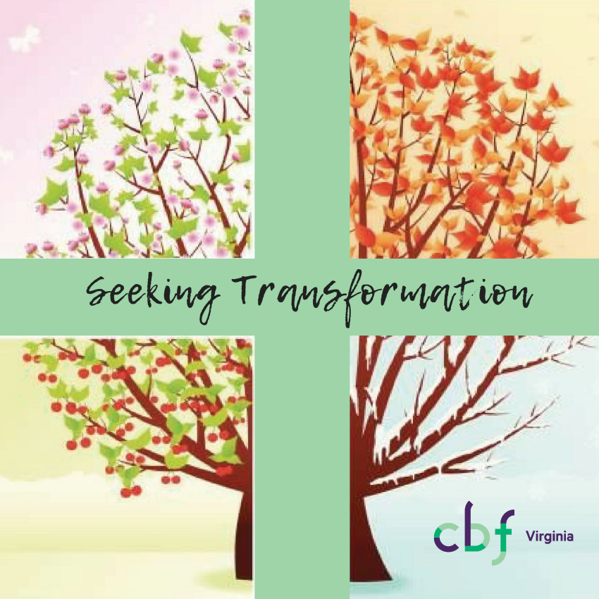SeekingTransformation-square